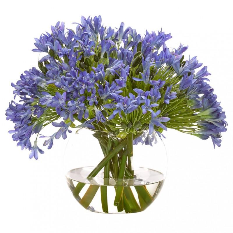 Букет цветов в вазе: синий Агапантус, NDI (Америка)