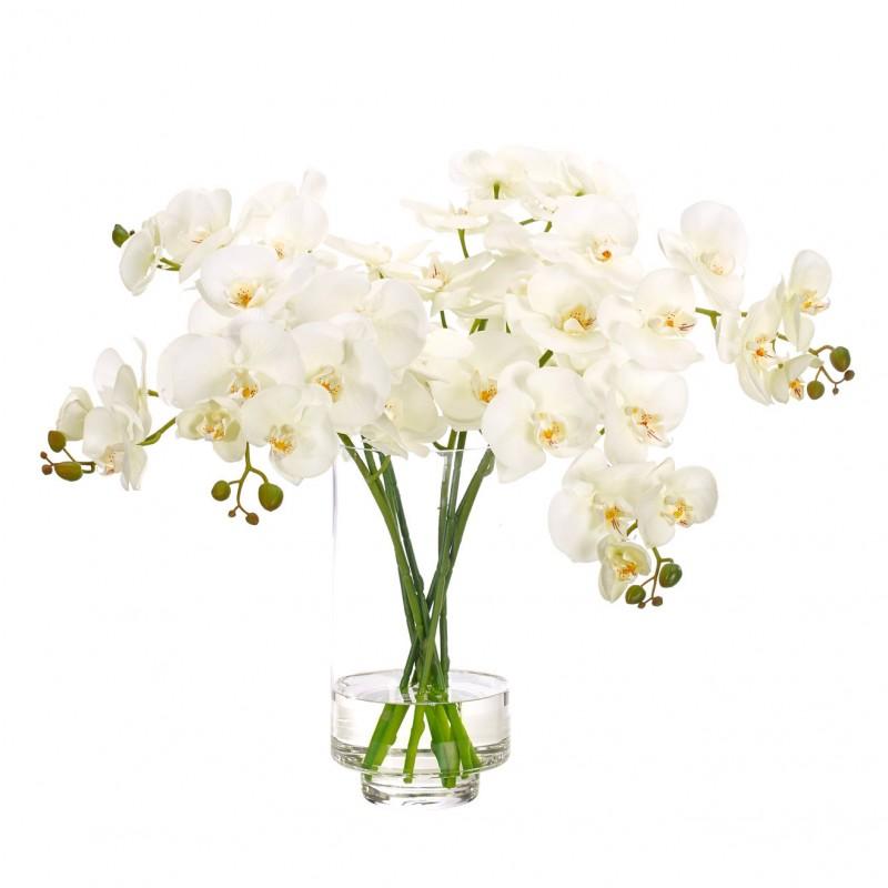 Букет цветов в вазе: белая орхидея, NDI (Америка)