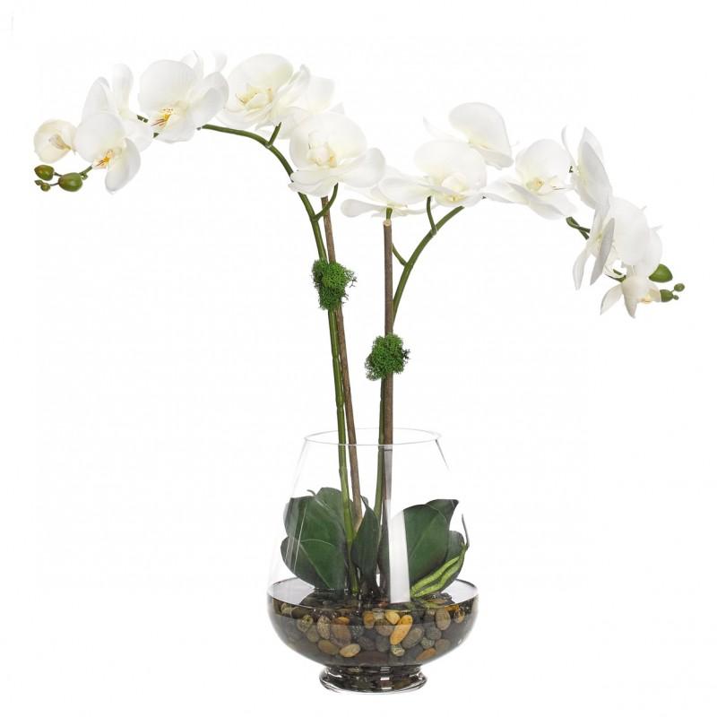 Синих васильками, орхидею в букетах киев купить